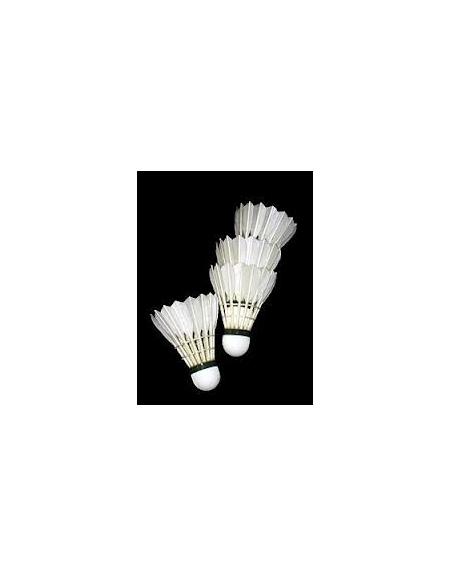 Volani badminton