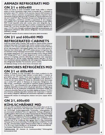 Armadio Refrigerato GN 2/1 monoblocco in Acciaio Inox a temperatura normale cm 71x80x203h