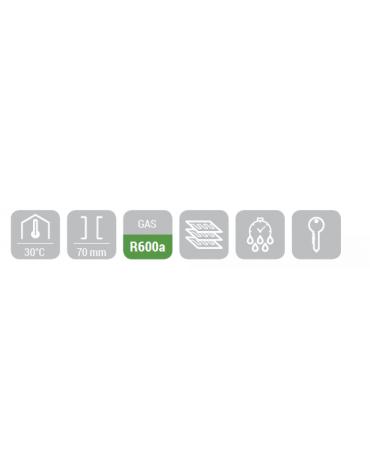 Armadio frigorifero con interno in abs - Refrigerazione roll bond con ventola di assistenza - mm 775x769x1900h