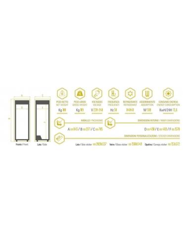 Congelatore verticale statico Porta a vetri cm 59,5x64x198h
