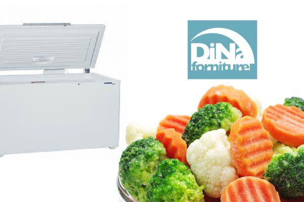 Dina Forniture - Il congelatore