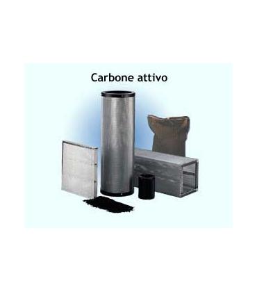 Filtri a carboni attivi