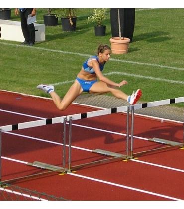 Salto ad ostacoli