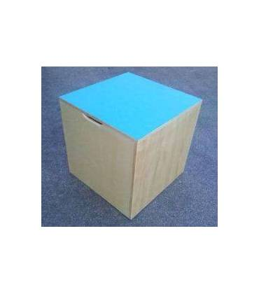 Cubi propriocettivi