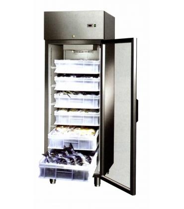Armadi frigoriferi per pesce